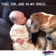 Baby Isn't Thrilled About Invasion of Personal Space | The Laughing Stork