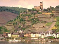 Rudesheim Castle in Germany---Outstanding and numerous castles are in this region!  Beautiful vineyards on the hillsides catch the eye.