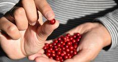 Plocka rätt i skogen: Så skiljer du lingon från mjölon | Land.se Land, Beauty