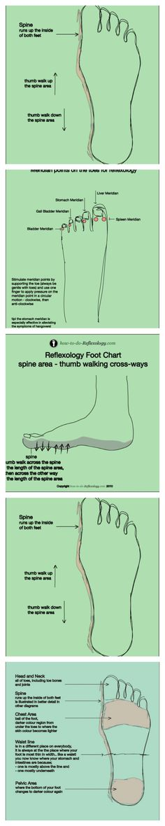Foot Reflexology Techniques And Step By Step Instructions .......  Here you will find Reflexology Foot Map, Diagrams  Charts including step by step instructions!