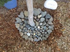 Displaying some of my heart rocks around my peach tree :):):) Heart In Nature, Heart Art, Heart Shaped Rocks, Rock And Pebbles, Peach Trees, Feather Painting, Cool Rocks, Sticks And Stones, Rock Collection