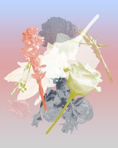 Contemporary photography and artwork Mauren Brodbeck Loyalland, Untitled 10 Contemporary Photography, Contemporary Art, Filmmaking, Artist, Artwork, Flowers, Anime, Movie Posters, Cinema