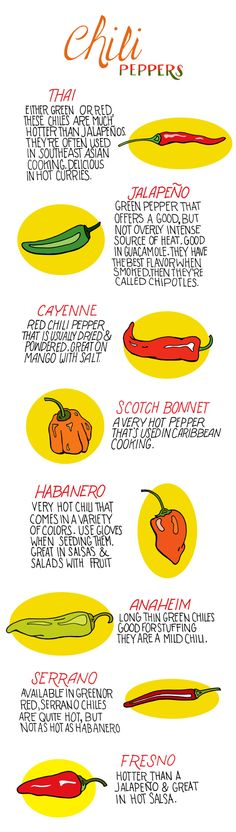 """Chili Peppers Guide Infographic (More on: """"Food ~ Recipes and Tips"""" board. Cuisines Diy, Salsa Picante, Comida Latina, Food Facts, Food Illustrations, Baking Tips, Stuffed Green Peppers, Food For Thought, Mexican Food Recipes"""