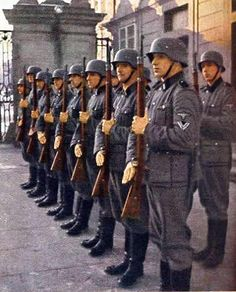 German World War 2 Colour Honor Guard Of The Waffen SS