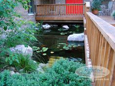 From constructing garden #koifish ponds to bigger natural #ponds, Give a call to @ReflectionsWG at 815-769-5387 today!