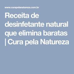 Receita de desinfetante natural que elimina baratas | Cura pela Natureza