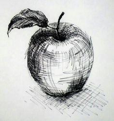Karakalem elma cizimi