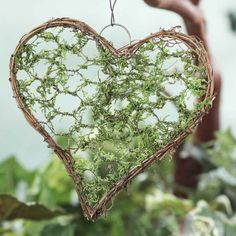 Mossy Grapevine Twig Heart - Wall Decor - Home Decor Fabric Chandelier, Twig Art, Twig Crafts, Heart Wall Decor, Factory Direct Crafts, Gift Wraping, Rustic Frames, Diy Crystals, Hanging Wall Art
