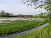 Wandel- en fietsroutes | Welkom in Almen