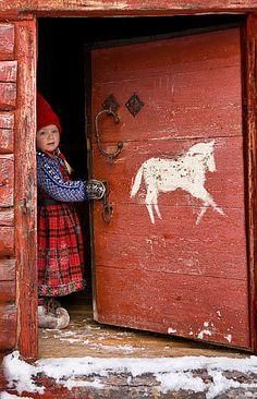 Sweet Scandinavian cottage door!
