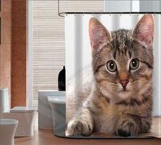 Animal Photo Image Shower Curtain - various designs available! Cat Shower Curtain, Custom Shower Curtains, Cat Breeds, Vibrant Colors, Bathroom, Free Shipping, Fun, Animals, Design