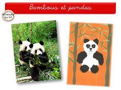 Visite aux pandas dans les forêts de bambous ...activités variées en arts visuels.