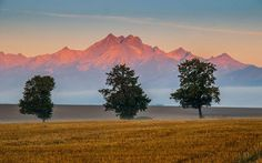 One morning under Tatras by Jozef Mačutek on High Tatras, Countryside, Mountains, Abstract, Places, Nature, Landscapes, Travel, Summary