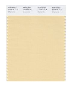 PANTONE SMART 13 0916X Color Swatch Card Chamomile Pantone
