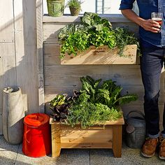 Farmer D Cedar Window Box   Williams-Sonoma
