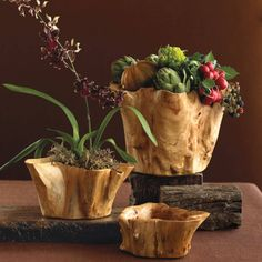 Root Of The Earth Bowl Collection | VivaTerra