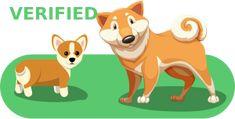 View Ad: Goldendoodle Litter of Puppies for Sale near Georgia, MARIETTA, USA. ADN-62385