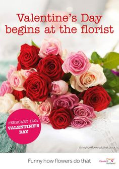Valentine's day / Valentijnsdag
