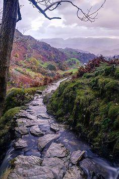 Crooked Creek, Scottish Highlands