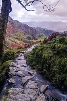Crooked Creek, Scottish Highland