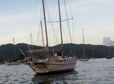 1976 Allied Seawind Ketch for sale - YachtWorld Used Boat For Sale, Boats For Sale, Used Sailboats, Used Boats, British Virgin Islands, Trinidad And Tobago, Sailing Ships, Us Virgin Islands, Sailboat