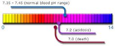 Are you acidic or alkaline?  Find out why it matters! (pH Blood Balance and Cancer)