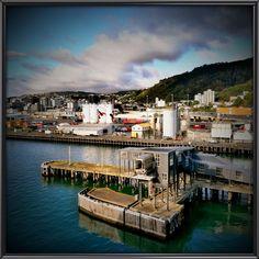 https://flic.kr/p/DhoCf5   NZ 2015 HUAWEI G7 C360   El puerto de Wellington