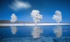 Blue Winter by Alfon No on 500px