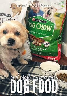 Real Meat and Grain Free Dog Food Your Pup Will Love #BestPuppyFood #FoodForPuppies Grain Free Dog Food, Free Food, Allergy Free Recipes, Dog Food Recipes, Purina Dog Chow, Best Puppy Food, Cooking Basmati Rice, Dog Tags Military