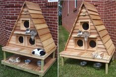 Outdoor Cat Cottage Triplex