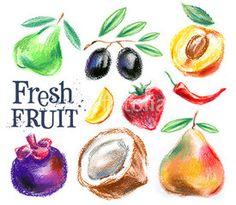 gardening. fresh fruit on a white background. sketch