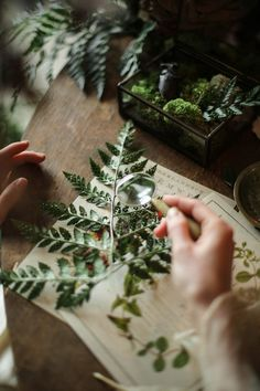 pressing flowers and leaves and making a nature journal Blumen und Blätter pressen und ein Naturjournal machen Wicca, Party Mottos, The Ancient Magus Bride, Witch Aesthetic, Nature Aesthetic, Tomboy Aesthetic, Nature Journal, Tarot, Flower Power