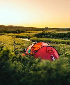 A favorite during summer! Visit Sweden, Outdoor Gear, Tent, Sports, Summer, Hs Sports, Summer Time, Tentsile Tent, Sport