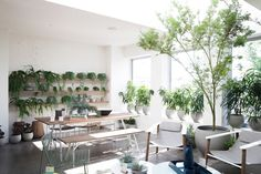 24 HOURS IN MELBOURNE - JARDAN From Cereal Volume 9 Photo by Cindy Chen Jardan Furniture, Cereal Magazine, Mcm House, Inside Garden, Interior And Exterior, Interior Design, Built In Microwave, House Plant Care, Flower Studio