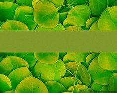 Se trata de una plantilla de Naturaleza para PowerPoint que tiene un efecto de hojas verdes en las cuales se puede superponer contenido