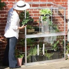 Make the most of walls and patios in the garden and the heat they store with this stunning double height Lean-To Cold Frame; an aluminium framed, toughened glass glazed structure which will give essential winter, spring and autumn protection to plants. http://www.harrodhorticultural.com/double-lean-to-cold-frame-pid8678.html Double Lean-To Cold Frame - Harrod Horticultural (UK)