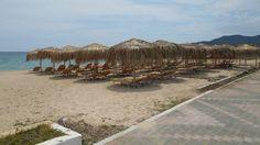 Sarti 2016: első tengerparti élményem #sarti #tengerpart #görögország Vineyard, Greece, Turkey, Country Roads, Beach, Outdoor, Outdoors, Vine Yard, Vineyard Vines