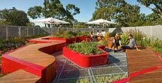 I tetti verdi di Melbourne: ricerca ed #ecosostenibilità