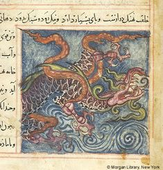 Bestiary, MS M.500 fol. 71r - Images from Medieval and Renaissance Manuscripts - The Morgan Library & Museum