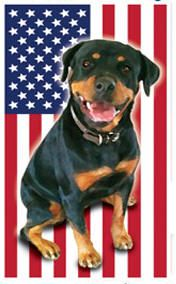 Want to train a dog to save a warrior? Check out this awesome website!