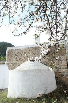 Architecture Life, Mediterranean Architecture, Ibiza Travel, Ibiza Spain, Painting Inspiration, Exterior, Irene, Random, Simple