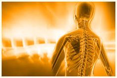 Goldsboro Spine Center offers best in class chiropractic care for your overall health and wellness. Relief is just a phone call away! Best Chiropractor, Thing 1, Ad Hoc, Chiropractic Care, Spa Day, Trauma, Michigan, Denver, Massage