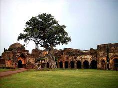 India's forgotten metropolis: ruins that are worth a detour