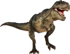 T-Rex Dinosaurs History | Dinosaurs Pictures and Facts
