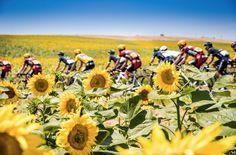Le Tour de France @LeTour pic.twitter.com/a1cn0Qzp0E The best shots of the day > instagram.com/letourdefrance #TDF2016 pic.twitter.com/a1cn0Qzp0E