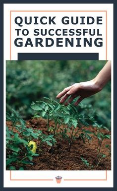 Use the common sense approach – the best days for spring planting are warm, but a little muggy and overcast, with showers in the forecast. It's even better if the ground is damp from a few days rain beforehand. Learn more in my quick guide to successful gardening. #successfulgardening #gardeningtips #gardeningebook Vertical Garden Plants, Shade Garden Plants, Succulents Garden, Gardening For Beginners, Gardening Tips, Xeriscaping, Water Wise, Drought Tolerant Plants, Flower Gardening