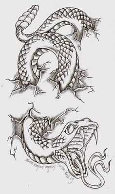 ideas tattoo snake arm deviantart for 2019 - ideas tattoo snake . - ideas tattoo snake arm deviantart for 2019 – ideas tattoo snake arm deviantart for 2019 # - Tattoo Design Drawings, Tattoo Sketches, Art Sketches, Tattoo Designs, Tattoo Ideas, Wolf Tattoos, Body Art Tattoos, Sleeve Tattoos, Men Tattoos