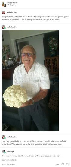 Cauliflower Granddad is Wholesome