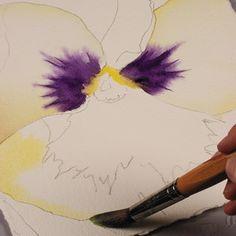 Birgit O'Connor, watercolor flower painting, petals