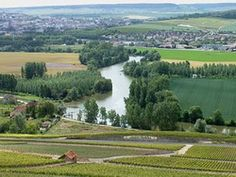 Champagne in France. In this French province people are occupied with growing of during more than two thousand years.